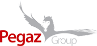Logo Pegaz Group Sp. z o.o.